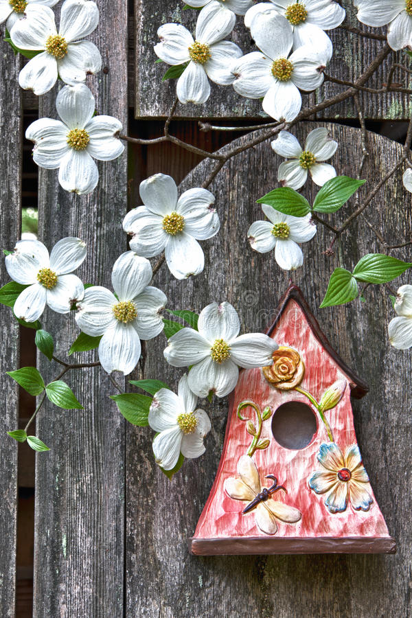 Birdhouse on old wooden fence with dogwoods stock photo