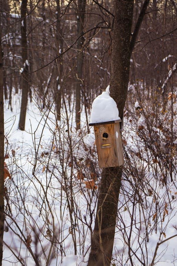 Birdhouse in the park in winter stock photo