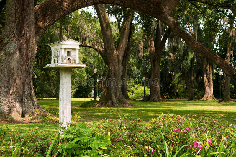 Birdhouse por razones de una plantación meridional imagen de archivo