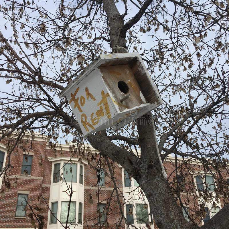 Birdhouse with `for rent` sign hanging in tree in front of an apartment building. White birdhouse is hanging in a tree. The house has the words `for rent` in stock photo