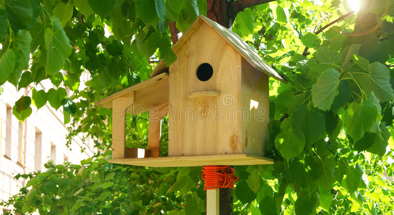 Birdhouse in a tree royalty free stock image