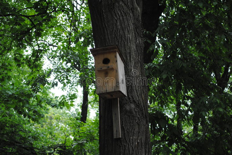 Birdhouse w miasto parku zdjęcie stock