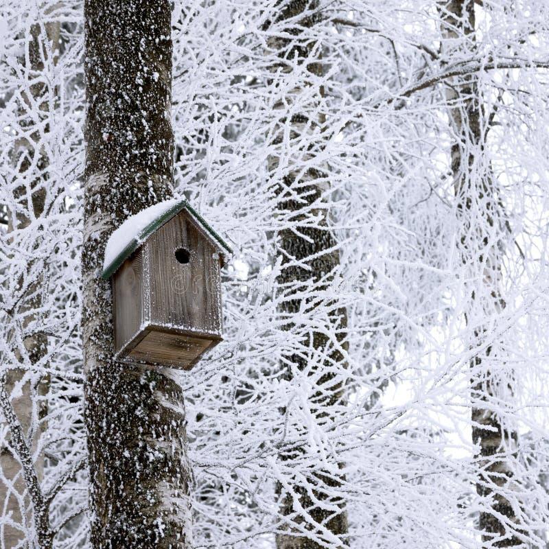 Birdhouse at winter royalty free stock photos