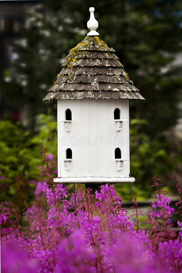 birdhousen blommar pink royaltyfri bild