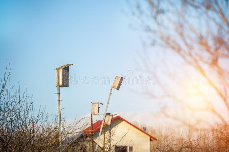 Birdhouses в деревне в предыдущей весне стоковое фото rf