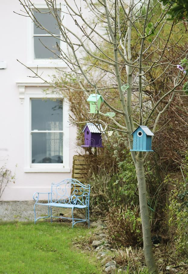Birdhouses на дереве стоковые фото