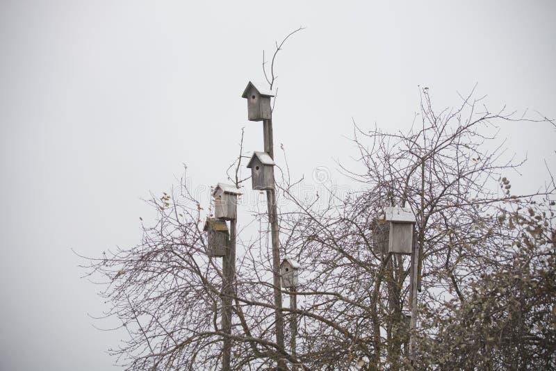 birdhouses Het geven voor wilde vogels stock afbeeldingen