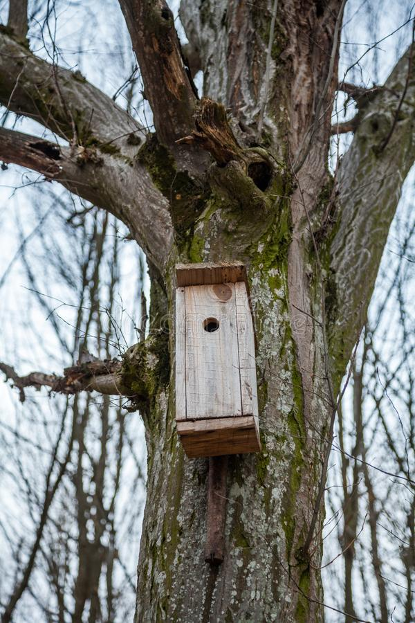 Birdhouses stock images