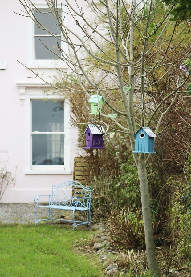 Birdhouses on the tree stock photos
