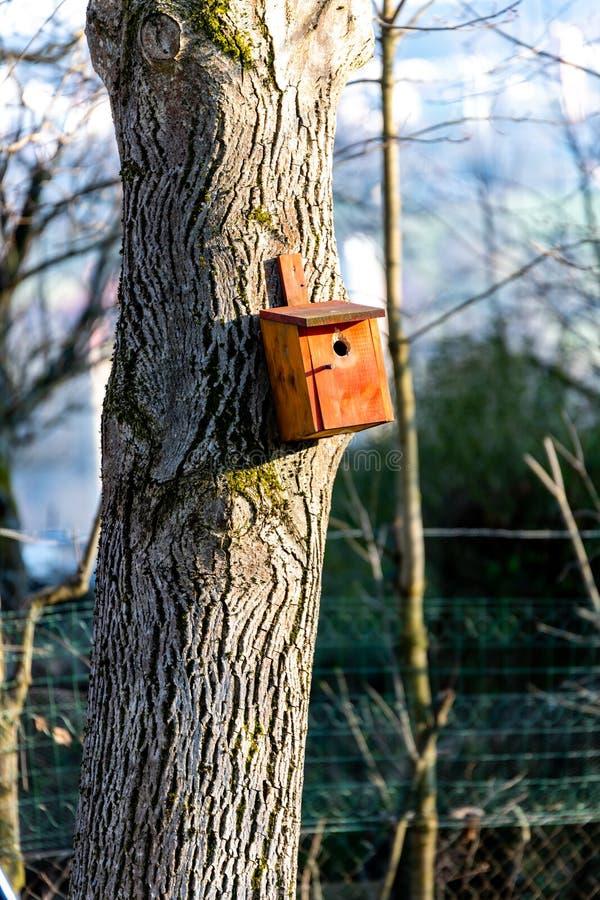 Birdhousing dans accrocher brun sur un arbre en premier ressort photo stock