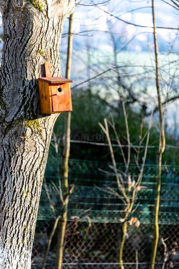 Birdhousing dans accrocher brun sur un arbre en premier ressort images stock