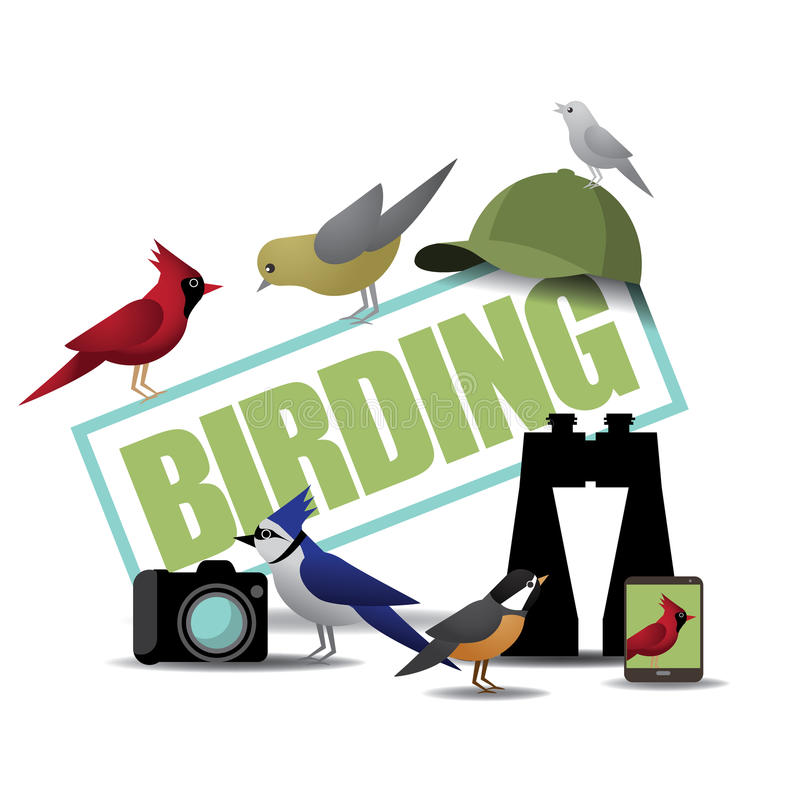 Birding ikona z lornetkami kamera i smartphone ilustracja wektor