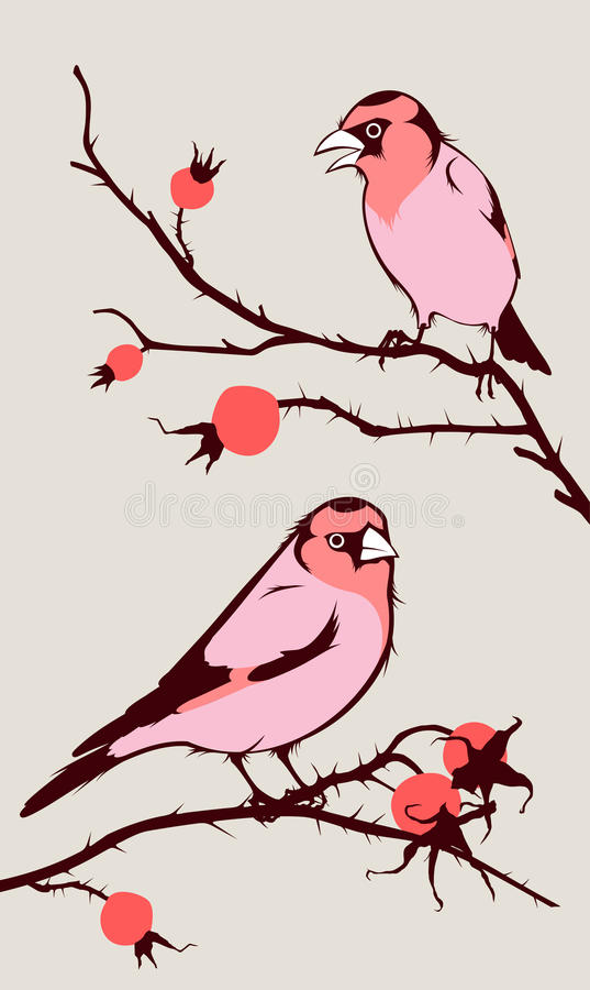 Download Birds stock vector. Image of fruit, flight, flock, hips - 11156501