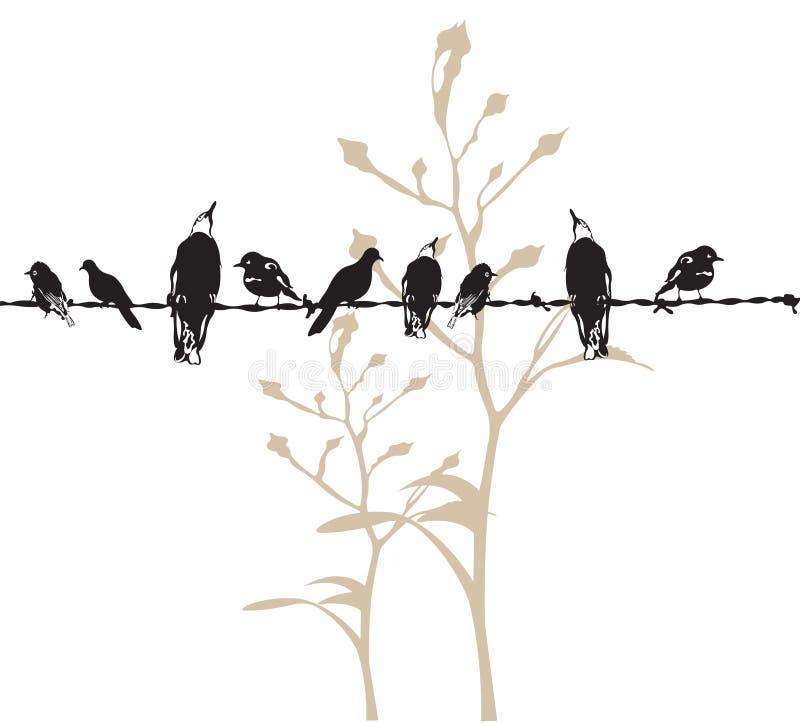 Birds stock illustration