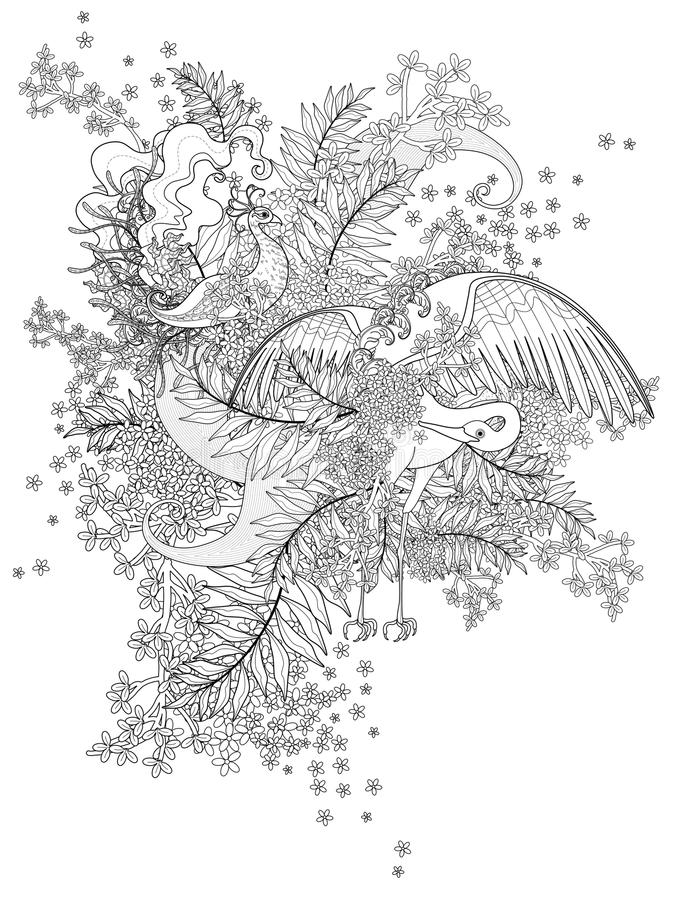 element coloring pages | Birds adult coloring page stock vector. Illustration of ...