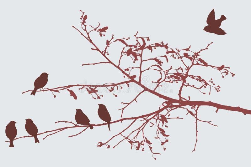 Birds in the autumn vector illustration