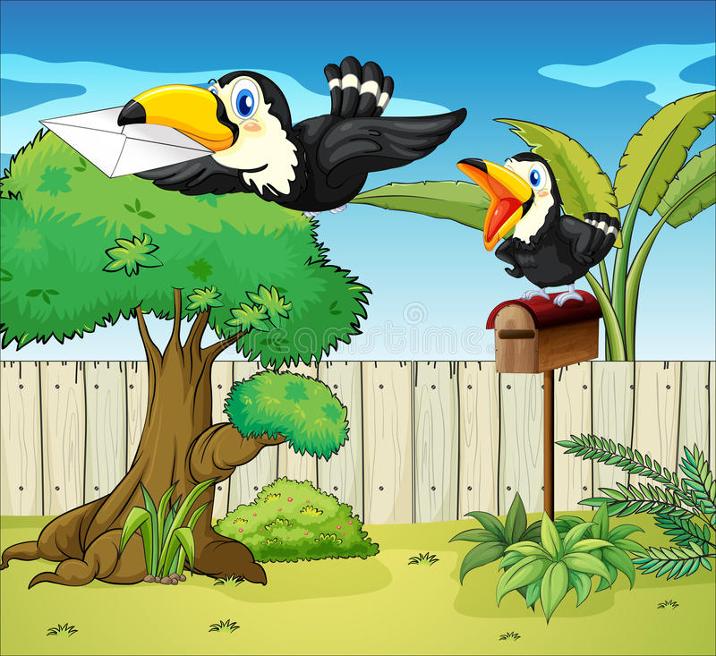 Birds at the backyard. Illustration of birds at the backyard vector illustration