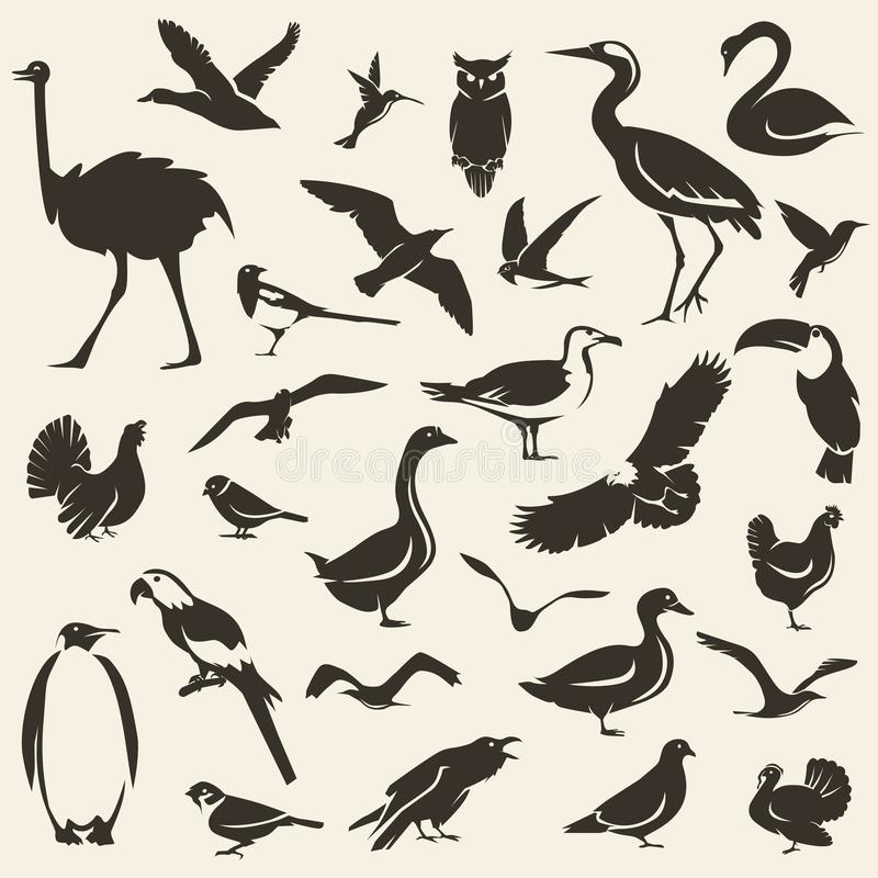 Birds big collection, stylized vector silhouettes vector illustration