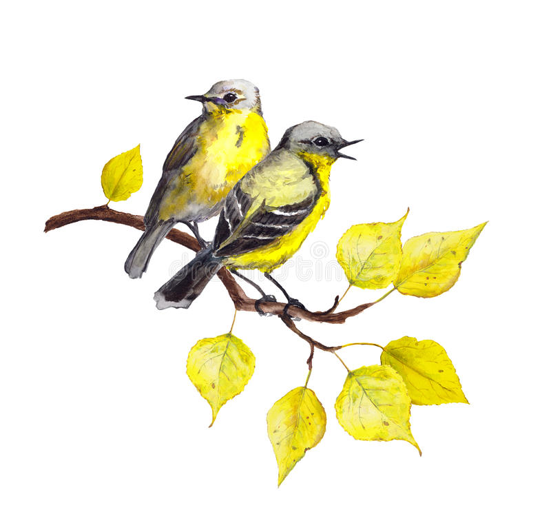 Birds at branch with autumn leaves. Watercolor stock photo