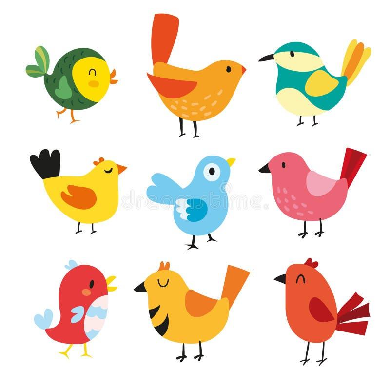Birds character vector design. Birds collection vector illustration