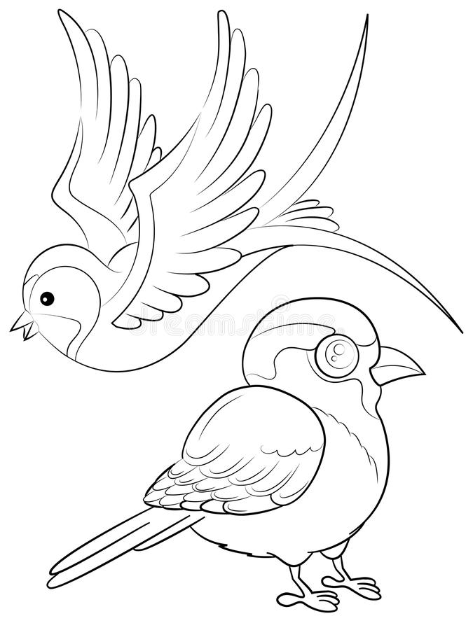 Birds Coloring Page. With a Swallow and a Sparrow royalty free illustration