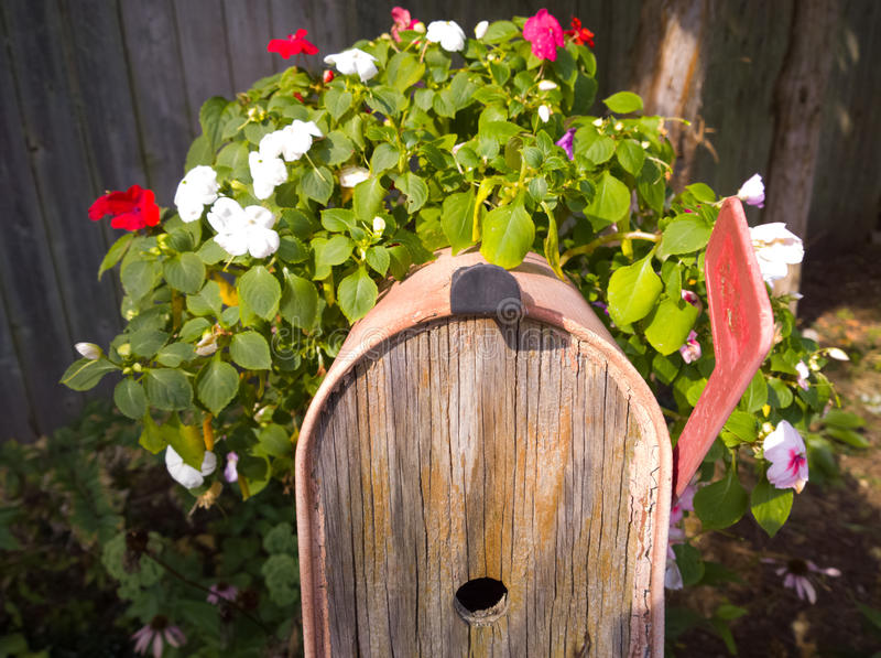 For The Birds. Entrance to bird house in post office box surrounded by flowers royalty free stock photos