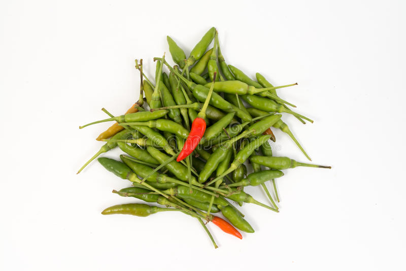 Birds eye peppers. Mixed hot birds eye peppers royalty free stock photo