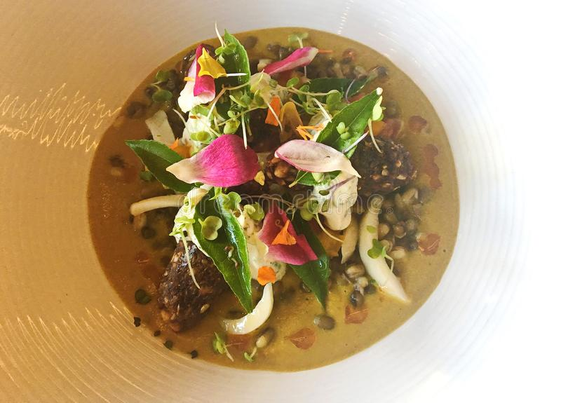Healthy Vegan Plant Based Walnut Kofta Dish royalty free stock image