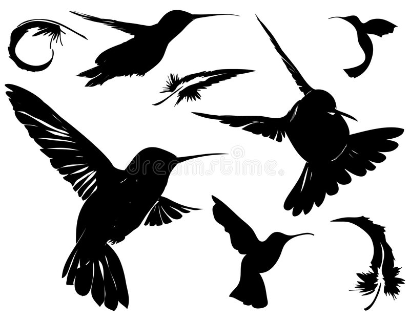 Download Birds & Feathers Silhouettes Stock Vector - Image: 2236010