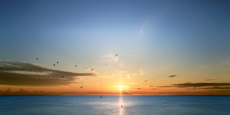 Birds Flying Over The Sea At Sunrise stock images