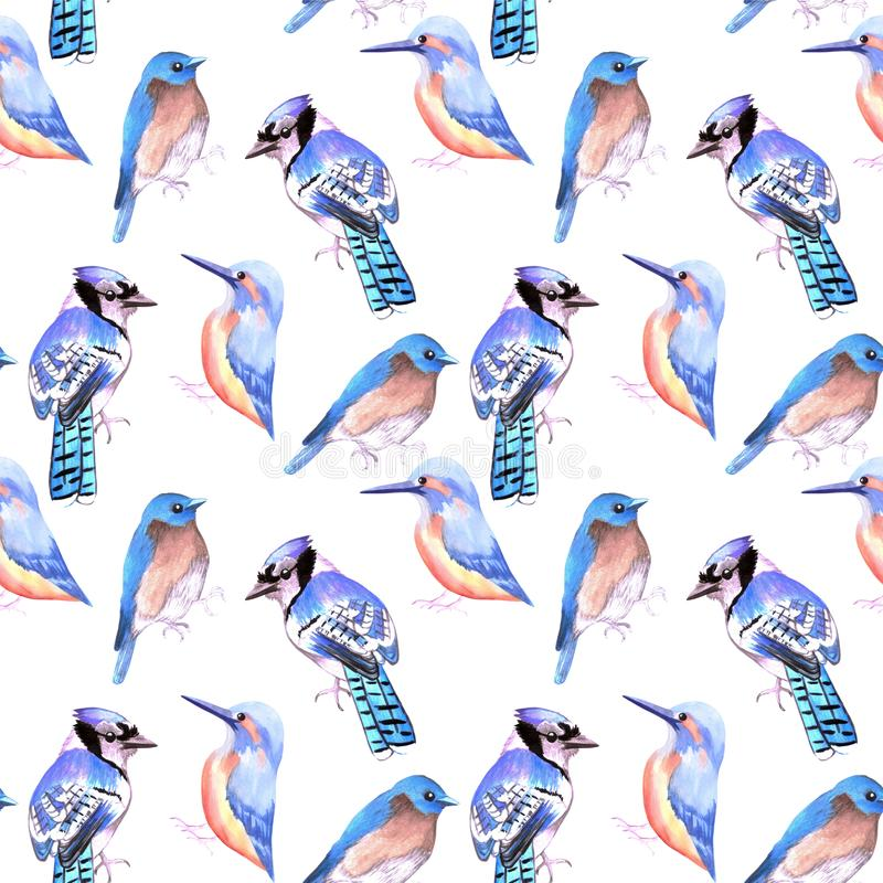 Birds kingfisher, bluejay, bluebird in tints and shades of blue seamless watercolor background.  stock illustration
