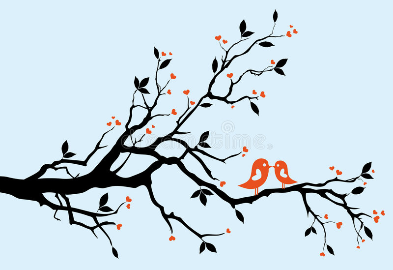 Birds kissing royalty free stock image