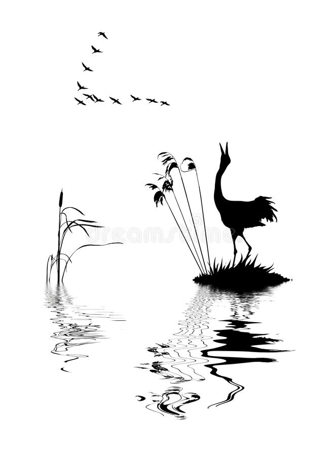 Download Birds On Lake Stock Photos - Image: 11202723