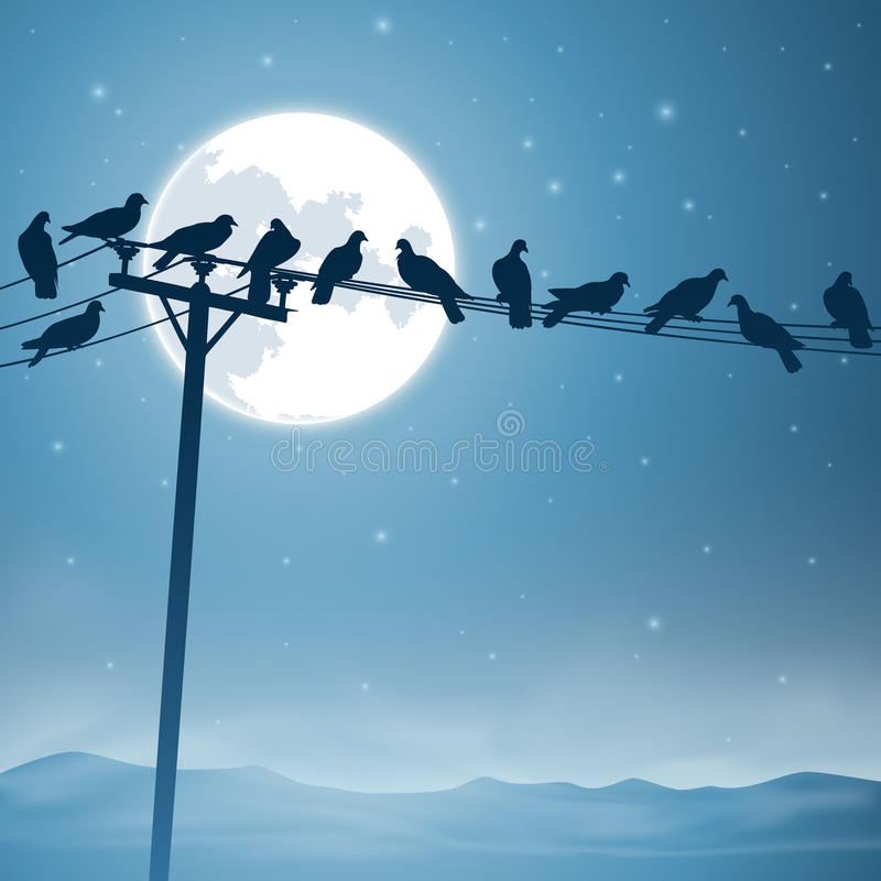 Birds On A Line Stock Image