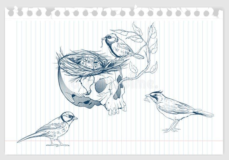 Birds making a nest in animal skull vector illustration