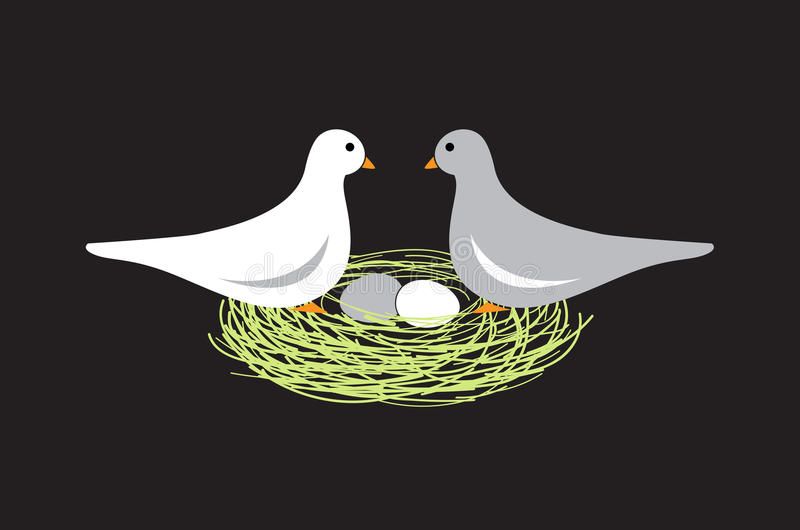 Birds in nest with eggs. On black background stock illustration
