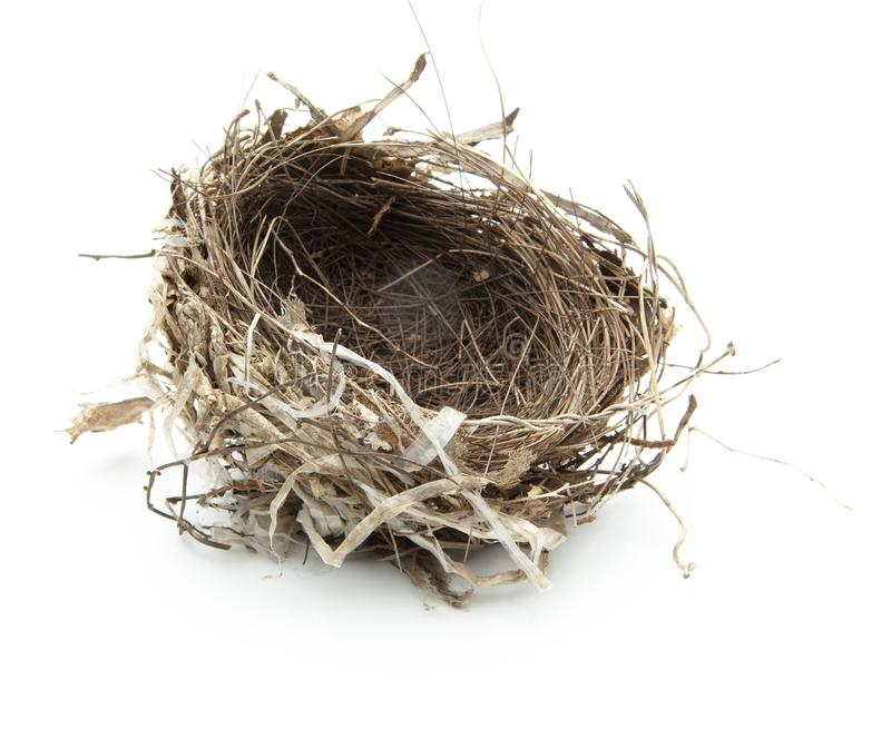 Birds nest isolated on white. royalty free stock images
