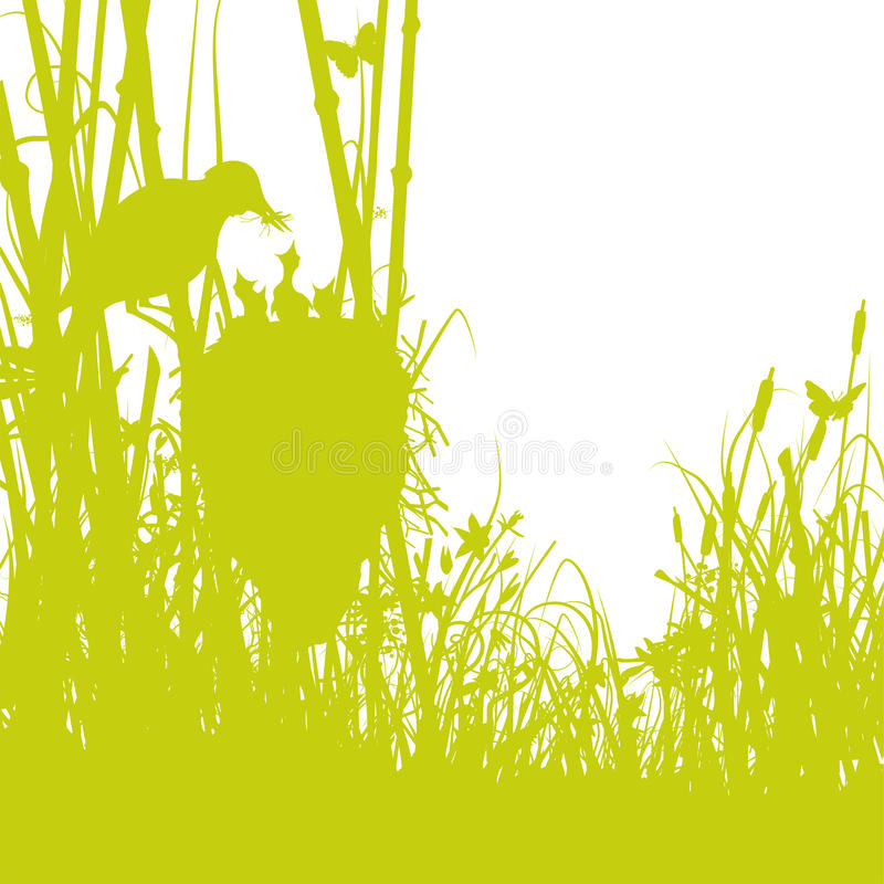 Birds nest in the reeds. Birds nest in the green reeds vector illustration