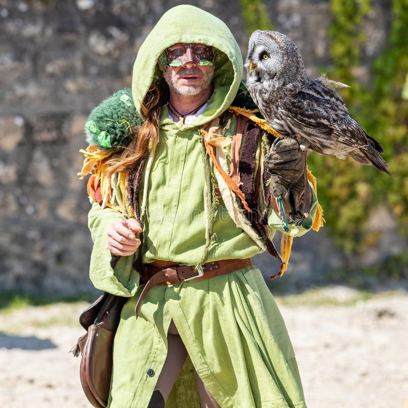 Birds and raptors show in provins, France royalty free stock image