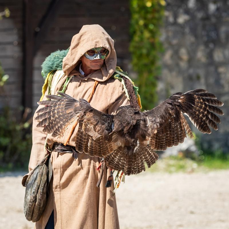 Birds and raptors show in provins, France stock images