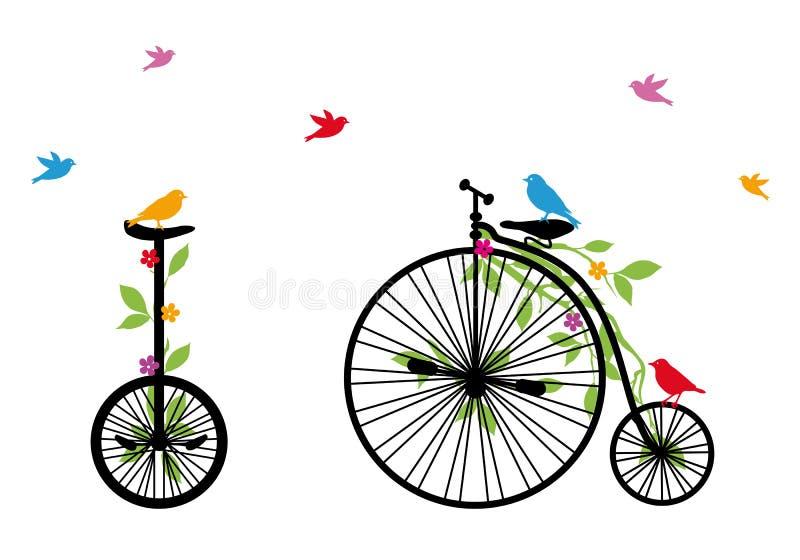 Birds on retro bicycle, vector illustration