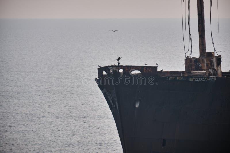 Birds, shipwrecks, seafront, harbor view. On the Black Sea shore, birds, ships and shipwrecks in autumnlight stock photo