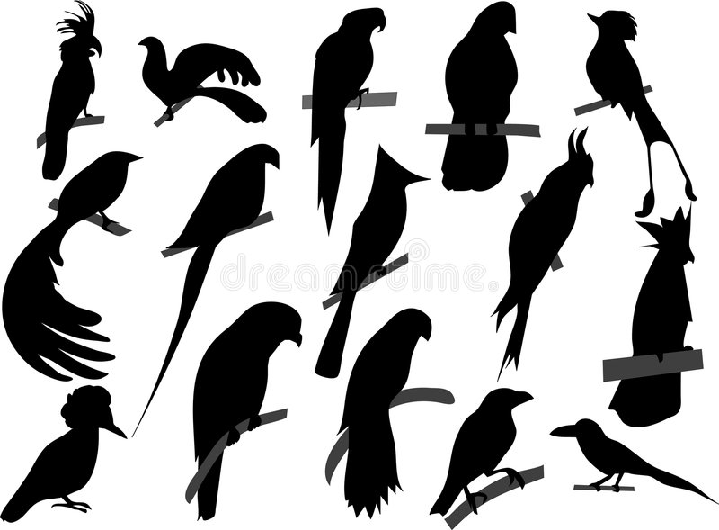 Birds silhouettes stock illustration
