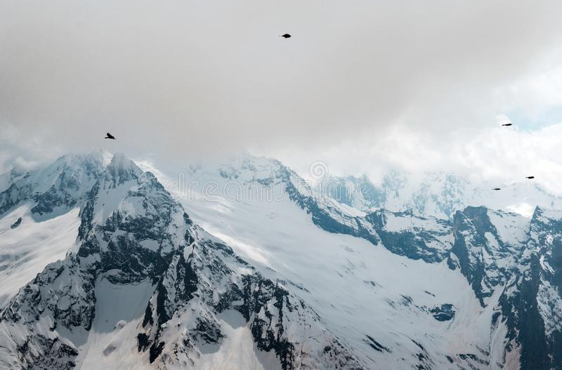 Birds in the sky with clouds over mountain slopes, mountains under snow, winter, Caucasus royalty free stock images