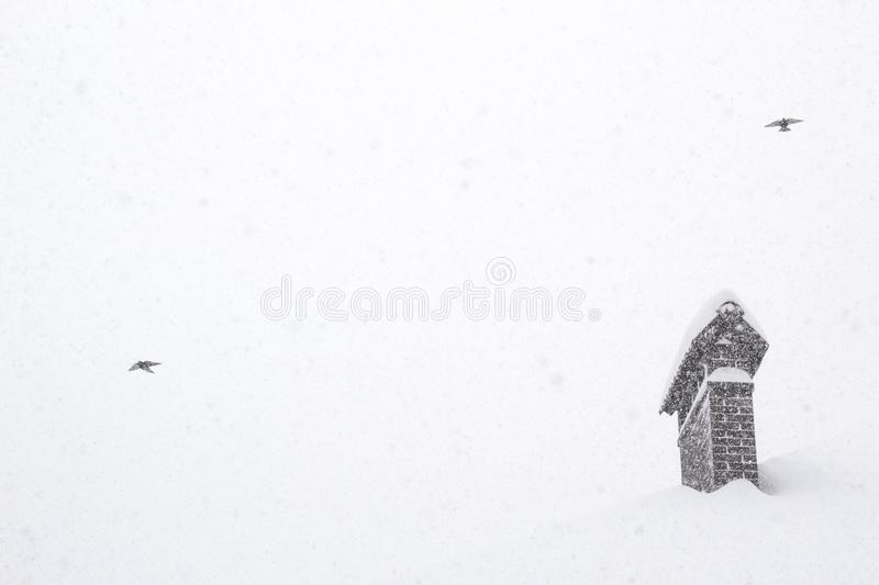Birds in sky Concept image on winter season Showfall and Fog effect Beautiful Winter landscape scene background with snowfall. Beauty winter backdrop Winter royalty free stock image
