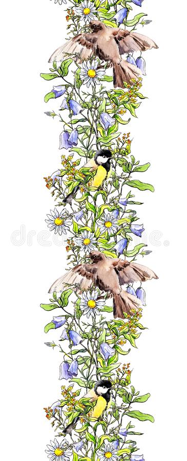 Birds - sparrow, tit in grass and flowers. Seamless border frame. Watercolor banner sketch style. Birds - sparrow and tit in grass and flowers. Seamless border royalty free stock images