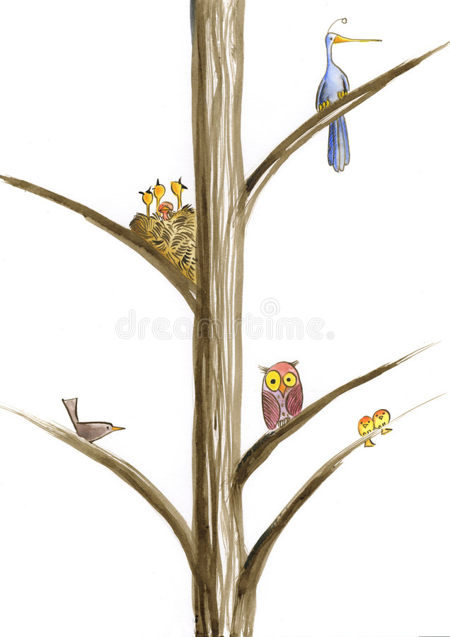 Download Birds On Tree Royalty Free Stock Photo - Image: 8571735