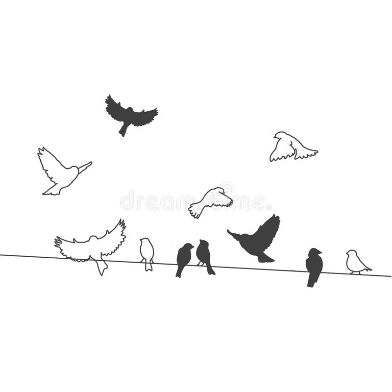 Birds On A Wire With White Background Stock Illustration ...