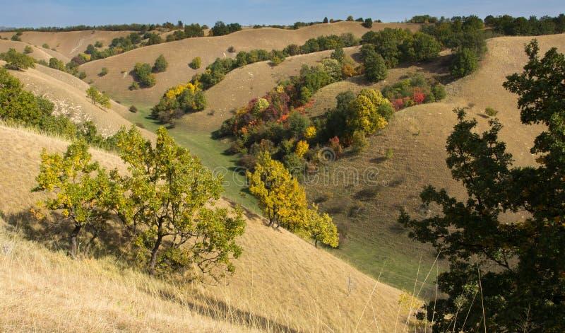 Birdseye-Ansicht von bunten Hügeln im Herbst lizenzfreies stockbild