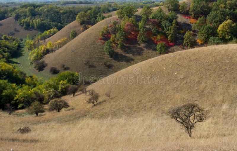 Birdseye-Ansicht von bunten Hügeln im Herbst lizenzfreie stockbilder